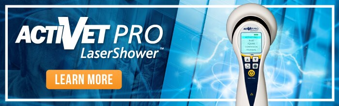 Learn more about the new ACTIVet PRO LaserShower